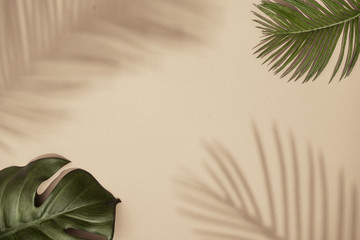 Wall Mural - Top view of green tropical leaves and shadow on sand color background. Flat lay. Minimal summer concept with palm tree leaf. Creative copyspace.