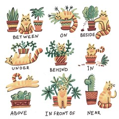 Cute hand drawn cat character in different poses with plant pot. Prepositions of place English. Studying of foreign language concept. Textured doodle cartoon character isolated illustration