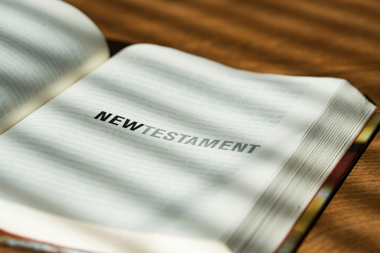 new testament open bible