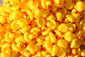 close up large group of yellow plastic toy ducks