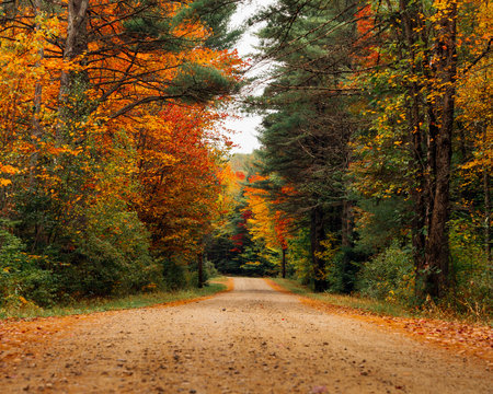 typical countryside road in Vermont during Fall season