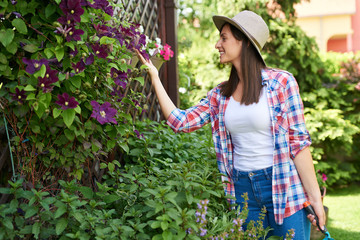 Attractive Caucasian brunette with straw hat on head and dressed casual taking care of her flowers in backyard.