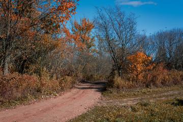 Autumn Colors in Rural Nova Scotia