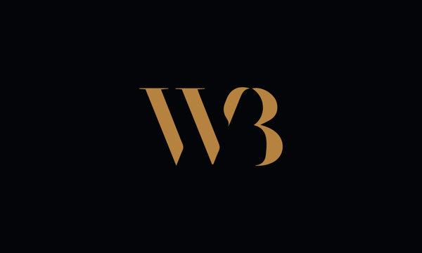 WB logo design template vector illustration