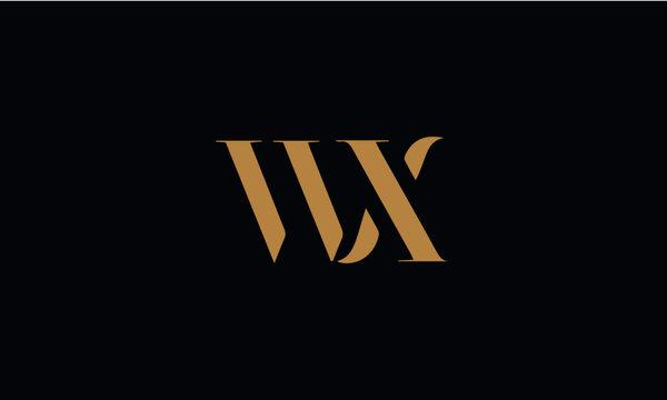 WX logo design template vector illustration