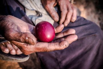 red eggs in the old man's hand