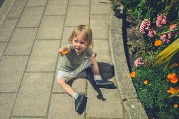 Little toddler picking flowers in the street
