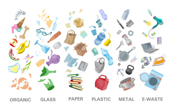 Waste sorting management concept separation garbage disposal refuse bin illustration