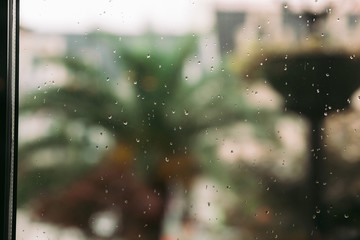 raindrops on window glass in the summer. palm trees in the background