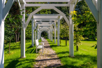 White benches in the park surrounded by green trees, sunlight, s