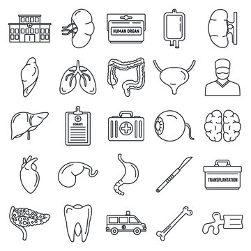 Transplantation organ icons set. Outline set of transplantation organ vector icons for web design isolated on white background