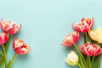 Foto op Canvas Tulp Spring flowers, tulips on pastel colors background. Retro vintage style.