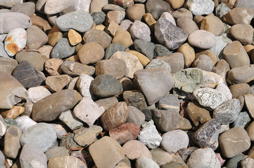 pebbles in beige and brown shades in sunlight