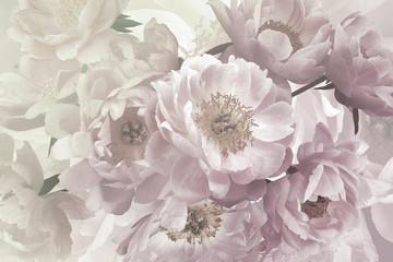 Bukiet pięknych kwiatów ogrodowych, piwonie, pastelowe kolory