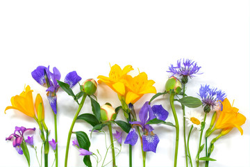 Wall Mural - Bright composition of summer flowers on the white background