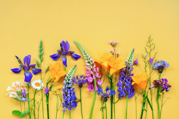 Wall Mural - Bright frame of summer flowers on the yellow background