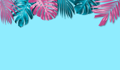 Wall Mural - Tropical leaves banner background with copy space