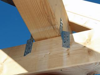 Dachkonstruktion im Detail
