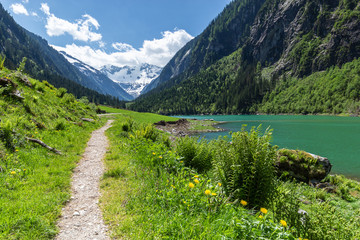 Wall Mural - Idyllic excursion destination scenic in summertime in the Alps, near Stillup Lake, Zillertal Alps Nature Park, Austria, Tyrol