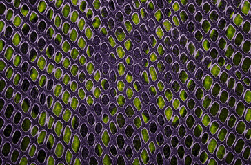 Wall Mural - Colorful snake skin texture. Seamless pattern.