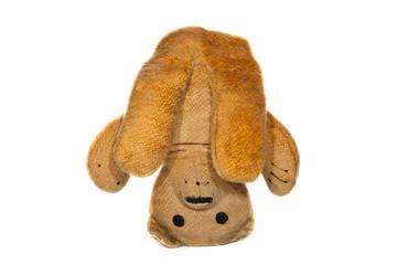 Yoga pose. Vintage teddy bear doing a headstand.