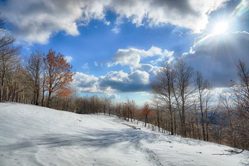 Wall Mural - Dramatic Sky On Winter Landscape