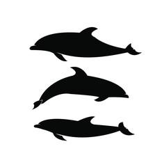 set dolphin black silhouette white background isolated logo icon design vector illustration