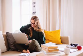 Fototapeta A young female student sitting on sofa, using laptop when studying. obraz