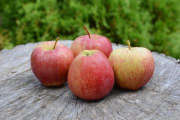 Fresh apples on old wood, in garden.