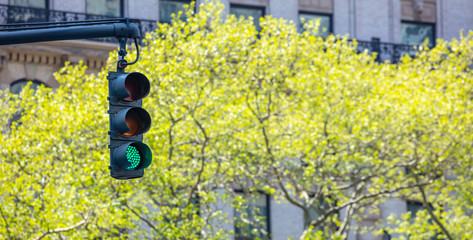 Green traffic lights for cars, trees and buildings background