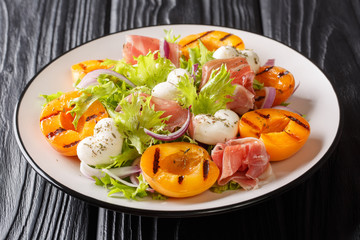 Easy recipe for summer salad with mozzarella cheese, prosciutto, grilled apricots, red onions and...