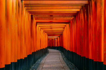 Wall Mural - The red torii gates walkway at fushimi inari taisha shrine in Kyoto, Japan.