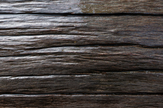 A wet wood after the rain with aged skin txture