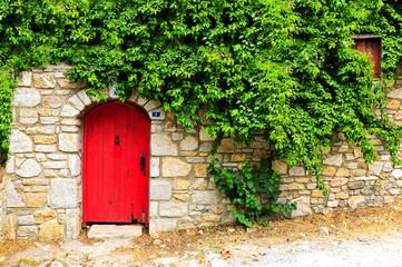 Wooden door in green plants