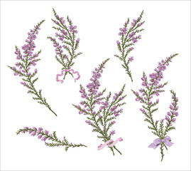 Branch heather mother's day mom vector print purple flowers blossom