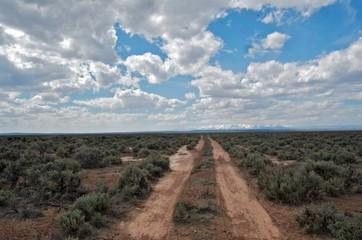 Dirt road in sagebrush desert heading to horizon