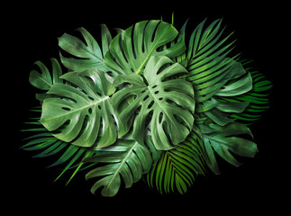Wall Mural - Tropical leaves on black background with copy space Summer banner design