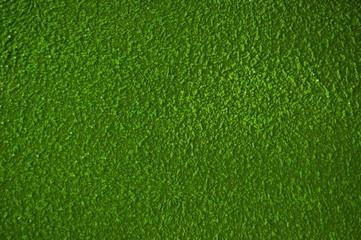 Tuinposter Gras texture of green grass