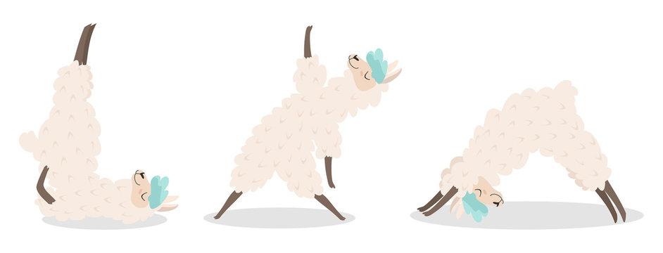 Set of stylish cartoon llamas in various poses of yoga. Vector illustrations isolated on white background.