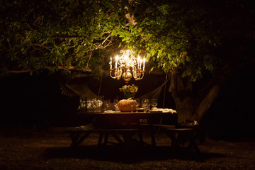Chandelier hangs from tree over dining table outdoors