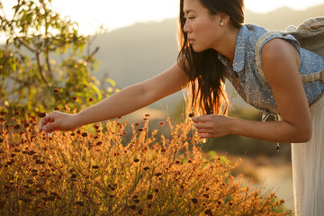Young woman picks wildflowers