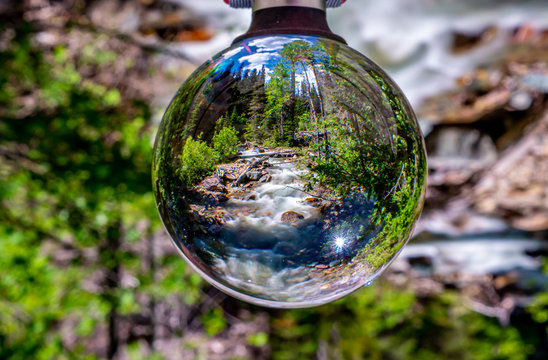 Wilderness Life Through the Eye of the Lensball