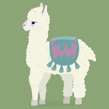 Cute white fluffy alpaca on a green background. Vector image.