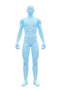 Human Body, Male, Man