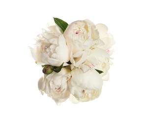 Bouquet of fresh peonies on white background, top view