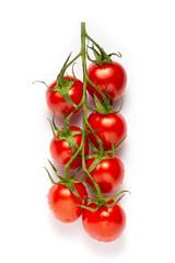 Fototapeta pomidory cherry gałązka na białym tle obraz
