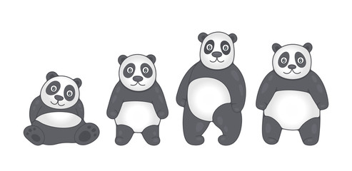 Set of Pandas. isolated on white background