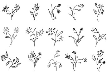 Flowers and branches hand drawn collection isolated on white background. 15 Floral graphic elements. Big  set. Outline collection