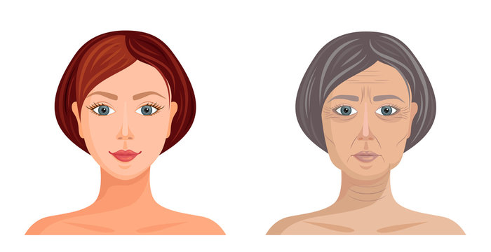 Comparison of young and old female faces. Aging process Vector illustration. Example of age changes.