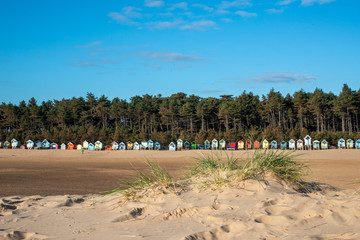 Fototapete - Landscape of Beach Huts in Norfolk